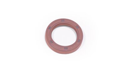 Oil seal viton 25/35/7 mm   (AT143)